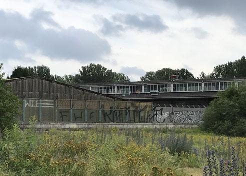 Das ehemalige Branntweinmonopol, auf dessen Fläche ein Stadtteilzentrum für Rothenburgsort entstehen könnte.