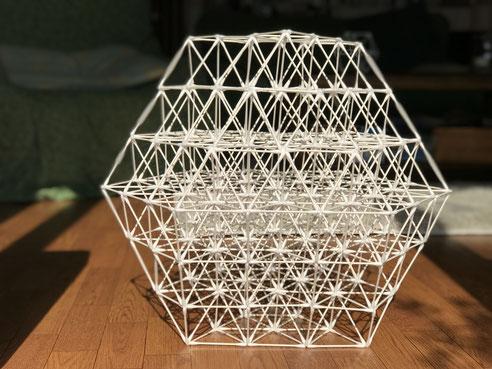 フラワー・オブ・ライフ(シードが13個で出来たフラクタル図形)