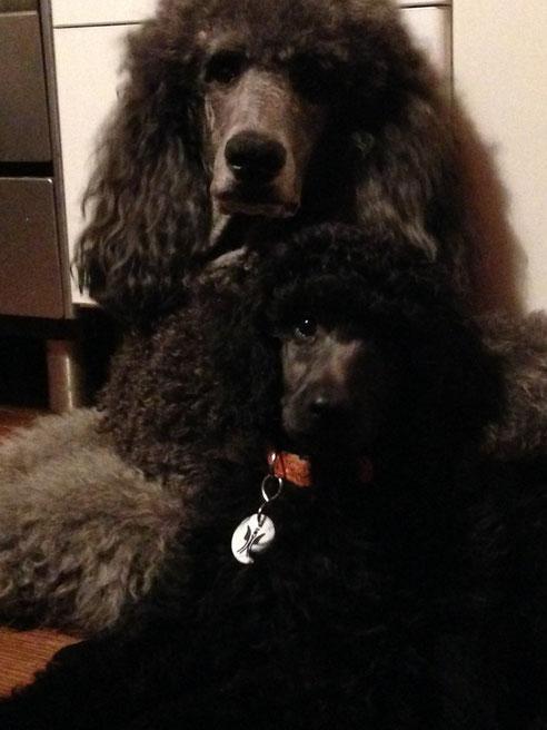 Lola mit Tochter Alberta