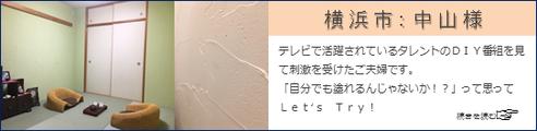 珪藻土 漆喰 塗り壁 DIY 天然素材