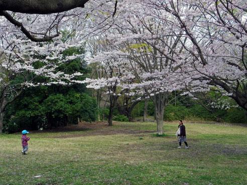 南本宿公園