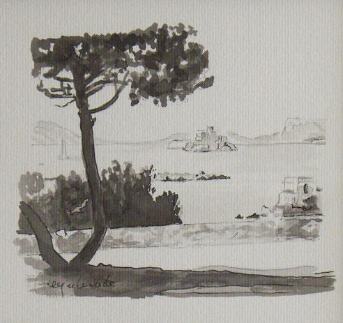 Jardin, Valmer, villa, Petit Nice, Passédat, Château, If, Frioul, île, Gaby,