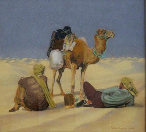 Sahara, la pause, Magrheb, dromadaire