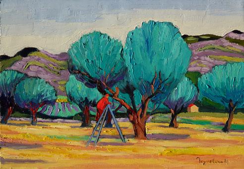 Jacques Peyrelevade, soins des oliviers, Alpilles, Quilici,