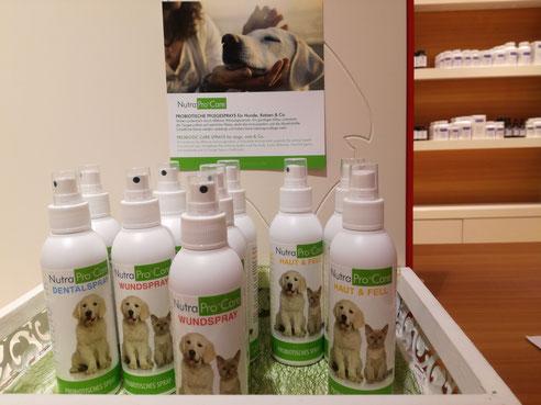 100% Natur Probiotische Pflegesprays für Hunde, Katzen und Co.
