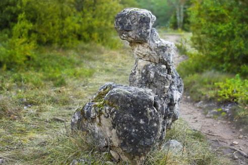 randonnee-pedestre-corniches-du-rajol-la-roque-sainte-marguerite-causse-noir-credit-photo-gite-exception-aveyron-le-colombier-saint-veran-region-occitanie