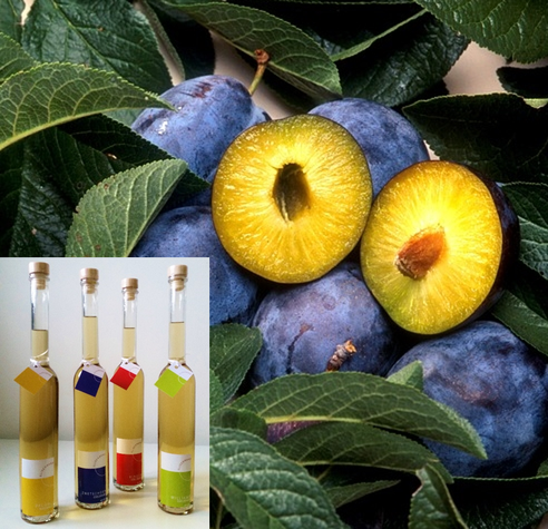 Aus reifen Früchten entstehen feine Schnäpse.
