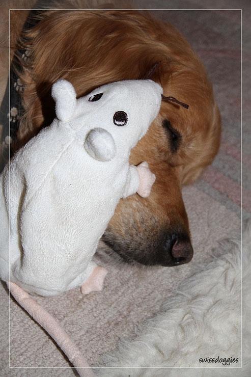 Ja und da ist Roxy mit seiner Ratte...