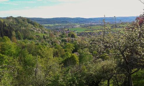 Blick vom Hagberg ins Remstal