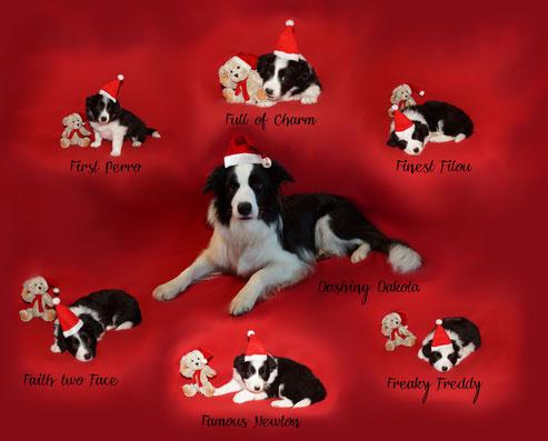 Wir wünschen frohe Weihnachten und besinnliche Feiertage!