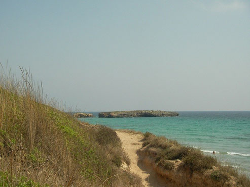 Escull Codrell vanaf de kust gezien.