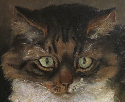 Naive portrait of a tabby cat