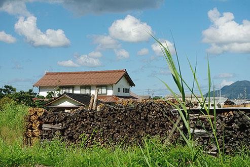 窯焚きに使う薪が積まれていました