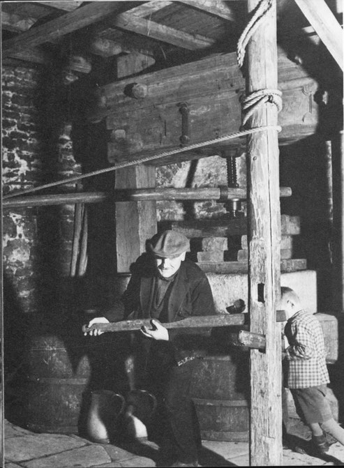 Alte Kelter im Einsatz Fritz König und sein Sohn