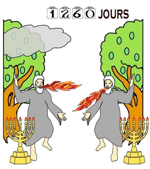 Les 2 Témoins avertirons les humains de l'intervention prochaine de Dieu (pendant 1260 jours, la première demi-semaine d'années avant le retour du Christ) les humains devront faire un choix: la bête et son nombre 666 ou le Royaume de Dieu .