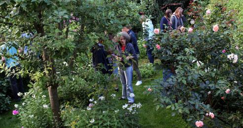 Bei einer kleinen Führung durch den naturnahen Stadtgarten von Christiane Recke (vorne) gab es viel zu entdecken