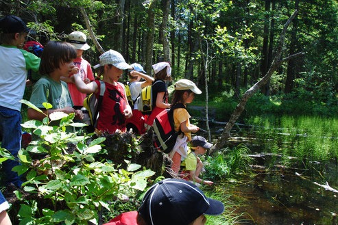 Kindergruppe beim Teich am Sturm-Archehof in Heiligenblut
