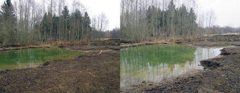 Neuer Teich Gomaringen Foto: K-H Kuhn