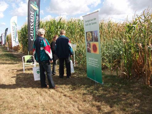 Großes Interesse an Farmsugro 180 auf dem Feldtag in Stary Golebin