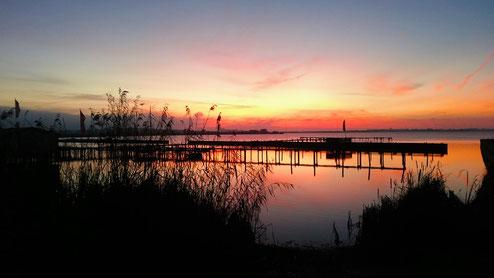 Die Sonne geht unter und taucht den Himmel über dem Dümmer-See in ein Meer aus Blau, Gelb und Rot - im Vordergrund sind von Schilf und Steg nur schwarze Umrisse zu erkennen.