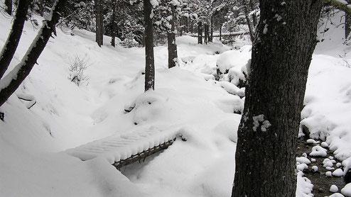 Raquetes de neu al pla de la Corda