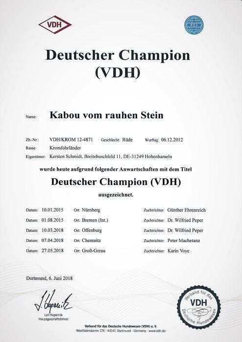 Kabous VDH-Urkunde für den Deutschen Champion (VDH)