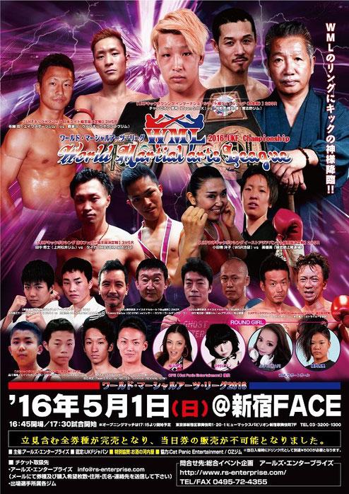 World Martial arts League 2016