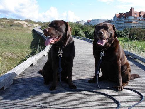 Mellow et Follow Me sur la promenade du Touquet