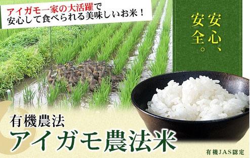 虫を食べてくれるアイガモ農法のオーガニック玄米