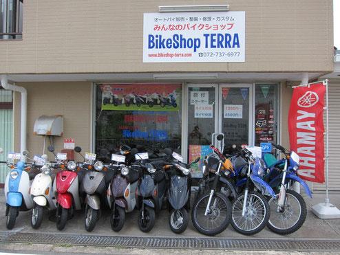 BikeShop TERRA