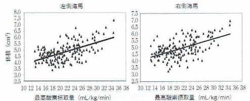 酸素摂取量と海馬の大きさ