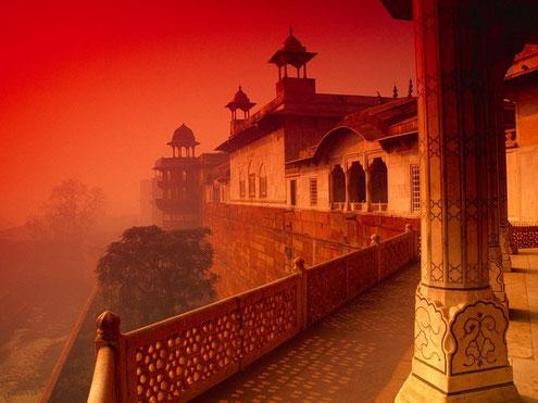 viatjar a la Índia i descobrir que som molt afortunats de tenir tot el què tenim