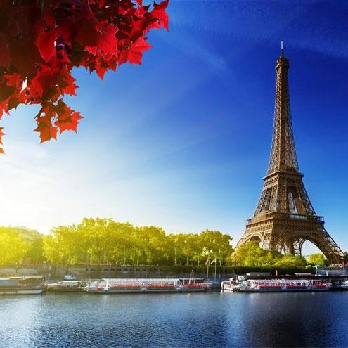 dir t´estimo al costat del Sena i la Torre Eiffel com a testimoni