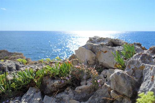 Istrien traumhafte Strände, schönste Strände Kroatiens, mit bester Kroatien Reiseführer Empfehlung