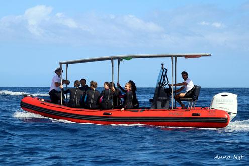 sortie duocean sur speed boat