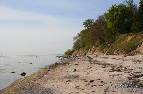 Strand bei Fakse - Feddet