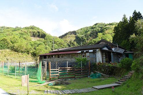 山の緑に抱かれた「ロバの本屋」