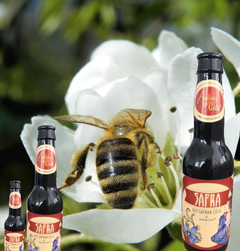 Safran - Cola, Kirschblüte, Biene,Honig