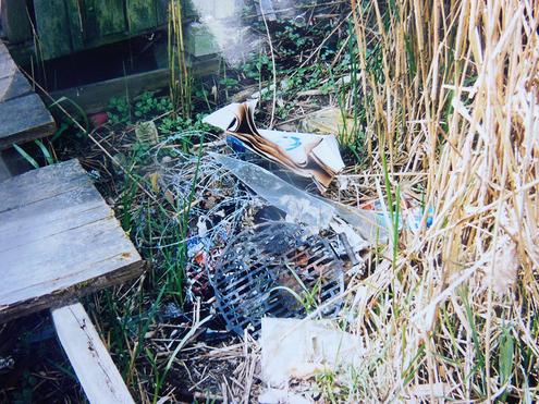 Angelmüll im Schilfgürtel des Naturschutzgebietes Wehradelta, neben einem  Angelsteg.