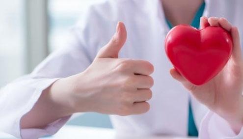 Ernährungstherapie zur Reduktion des Herz Kreislauf Risikos bei erhöhtem Cholesterin