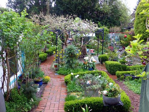 Bei dem Spaziergang durch den Garten finden uns die Kräuter, die für den Tee richtig sind!