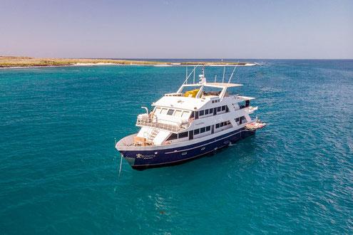 Galapagos Inseln günstig und gut