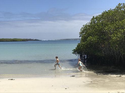 Galapagos Inseln mit der ganzen Familie