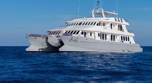 Reise Infos Galápagos Inseln Corona