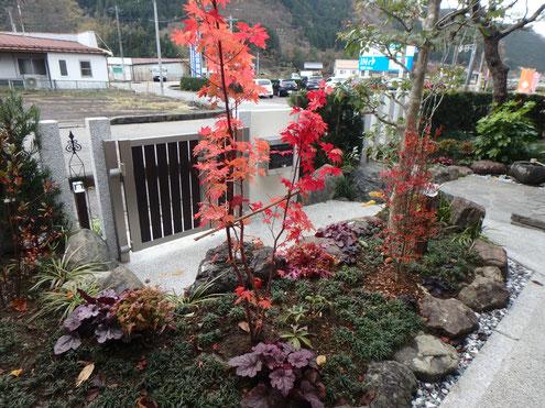 お庭のリフォーム コハウチワカエデが美しいアプローチ周り