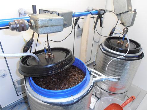 Champignonkompost für Biogas durch Biotechnologie von Novis