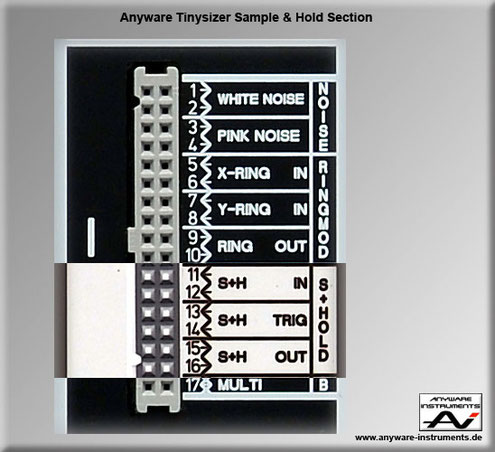 tinysizer synth synthesizer shop anyware instruments. Black Bedroom Furniture Sets. Home Design Ideas