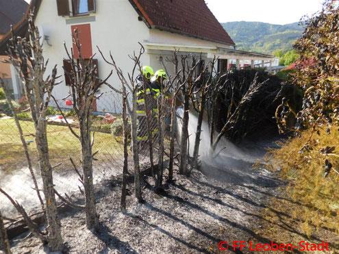 Feuerwehr, Blaulicht, Leoben-Stadt, Heckenbrand, Trommelschlagweg