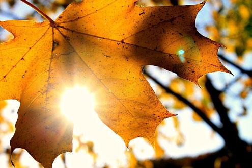 Hypnose hilft gegen Herbst- und Winterbues, Ruhe, Entspannung, Gelassenheit, Entspannung finden, Wohlbefinden erlangen
