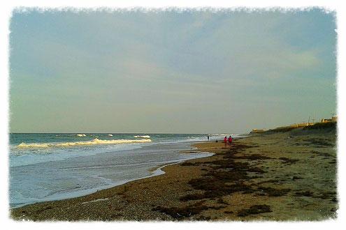 Strand bei Kitty Hawks